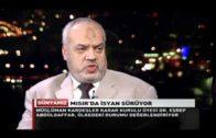 Müslüman Kardeşler Karar Kurulu Üyesi Dr. Eşref Abdülgaffar Söyleşisi